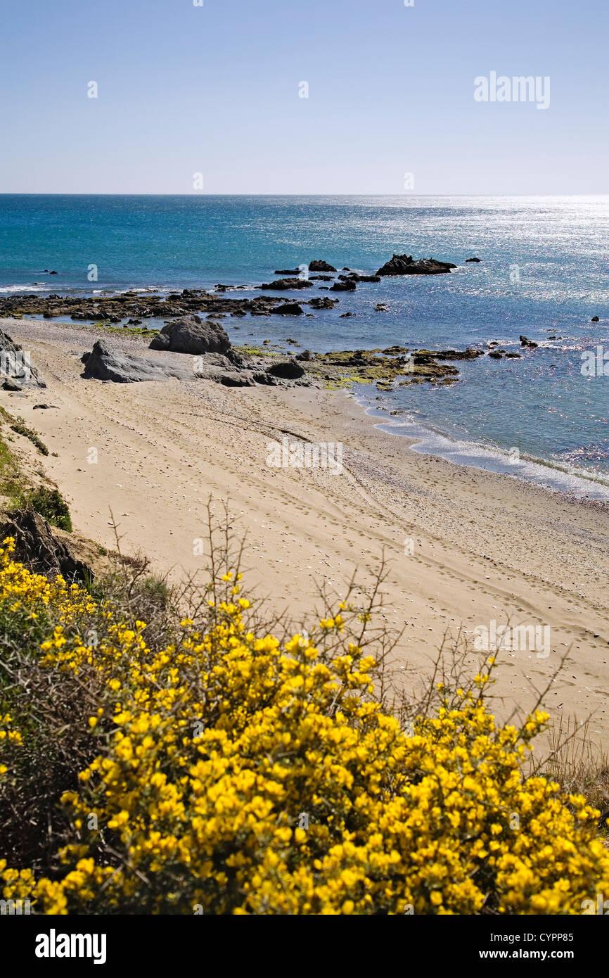 Mediterranean sea and beach Casares Malaga Costa del Sol andalusia Spain mar mediterraneo y playa de casares malaga - Stock Image