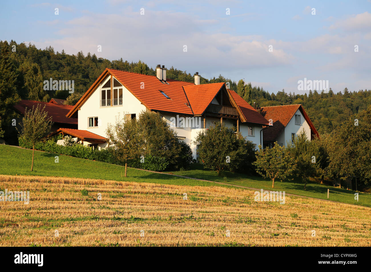 Houses in Switzerland surrounded by fresh green trees Stock Photo
