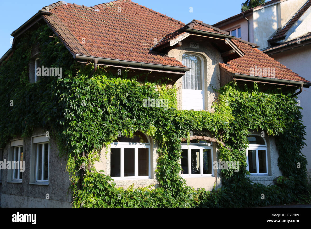 House covered in green ivy in Switzerland Stock Photo