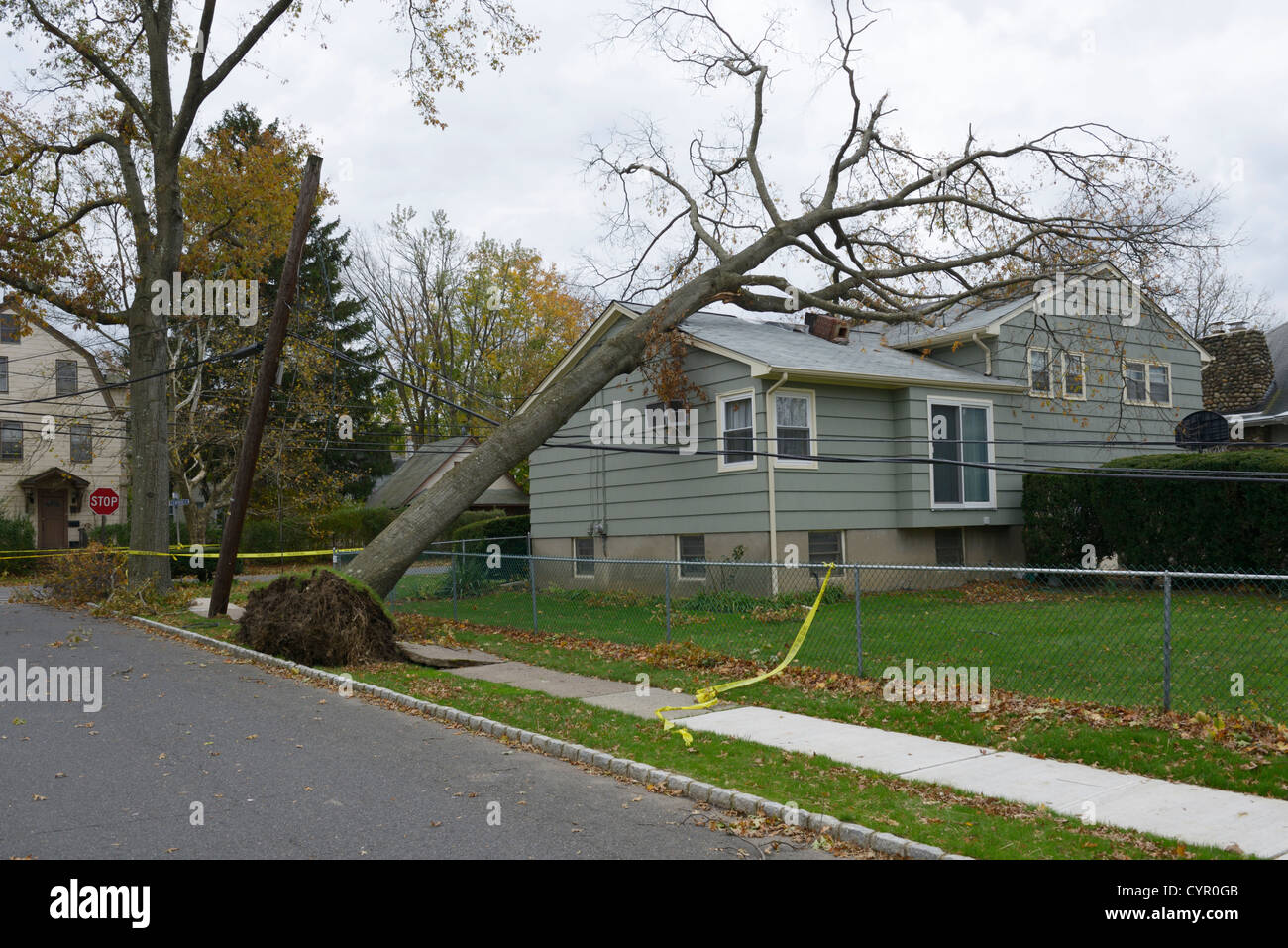 Destruction to houses, trees and power lines caused by Hurricane Sandy, northern New Jersey - Stock Image