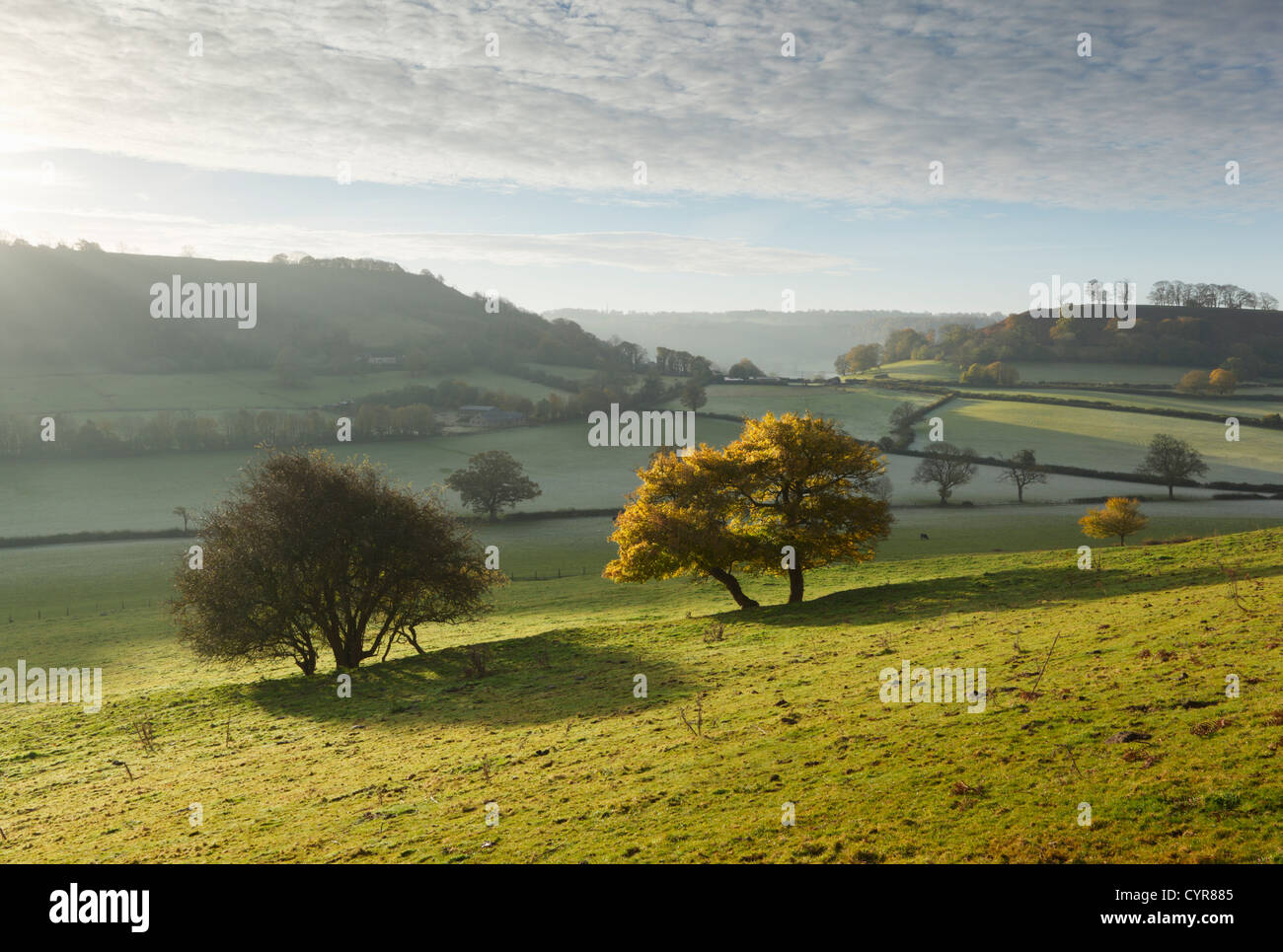 Cotswold Countryside in Autumn.  Gloucestershire. England. UK. - Stock Image