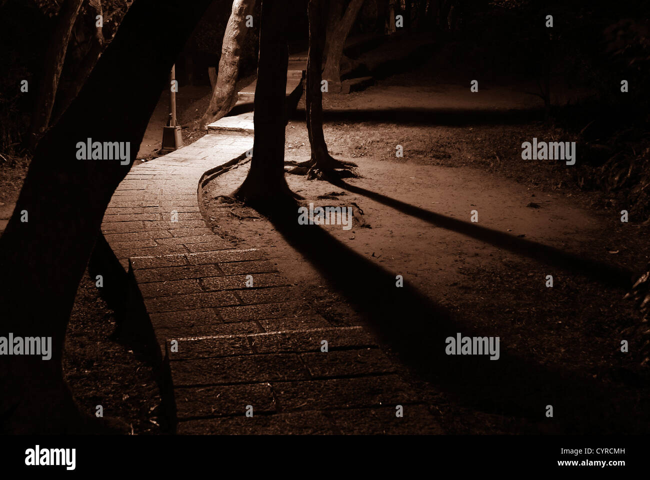 This is a road in a small park, very unsafe at night. - Stock Image