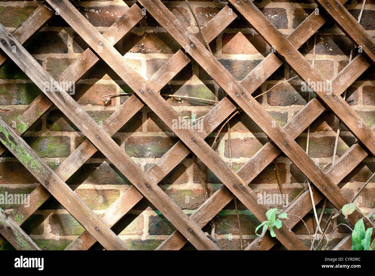 Trellis Wooden Wall Garden Stock Photos & Trellis Wooden Wall Garden ...