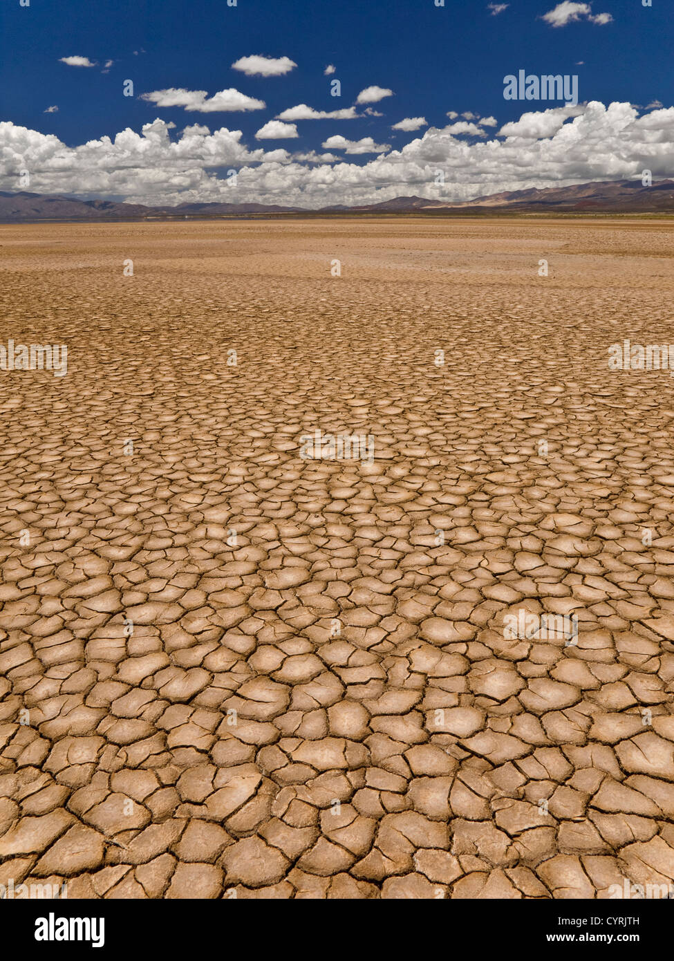 Large field of baked earth after a long drought. - Stock Image