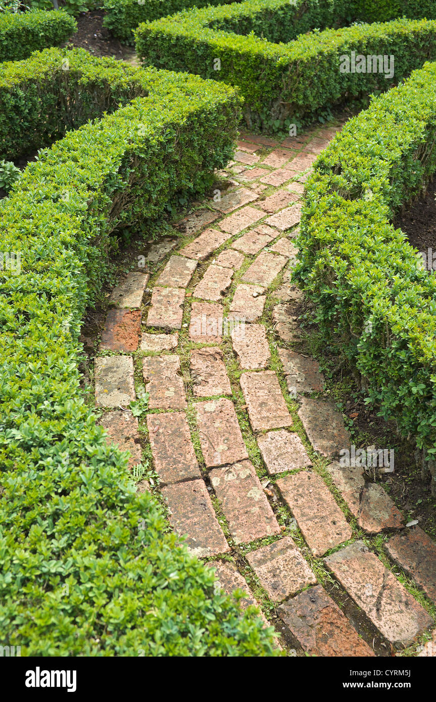 Box hedging with brick paved path, England, UK - Stock Image