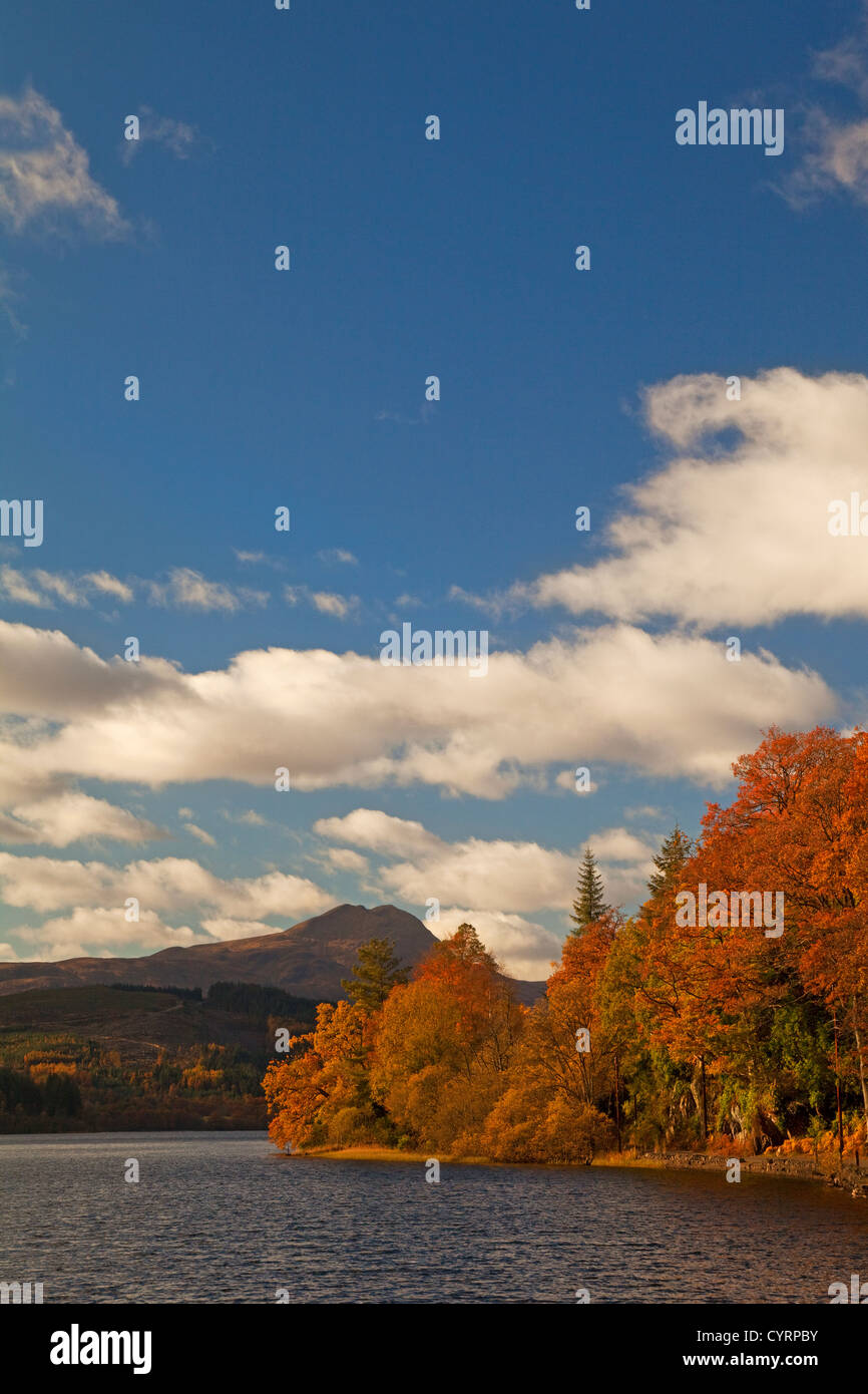 Autumn colours at Loch Ard. Ben Lomond is in the background. Stock Photo