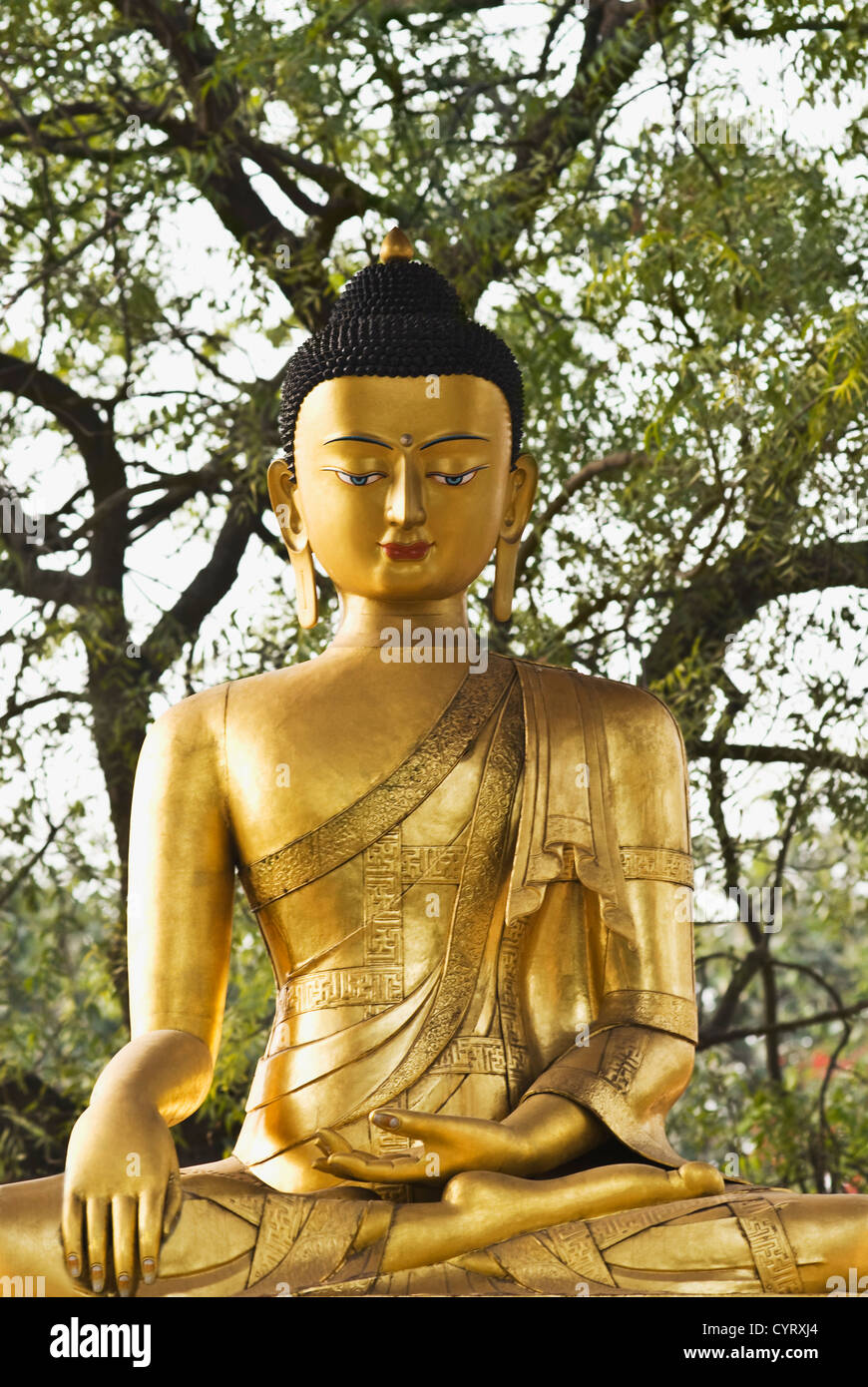 statue of lord buddha in a park new delhi india stock photo