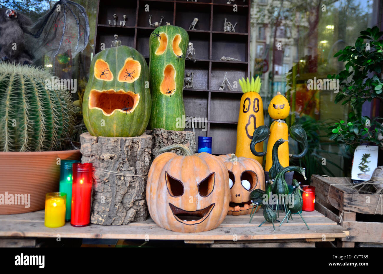 halloween showcase of a florist shop stock image
