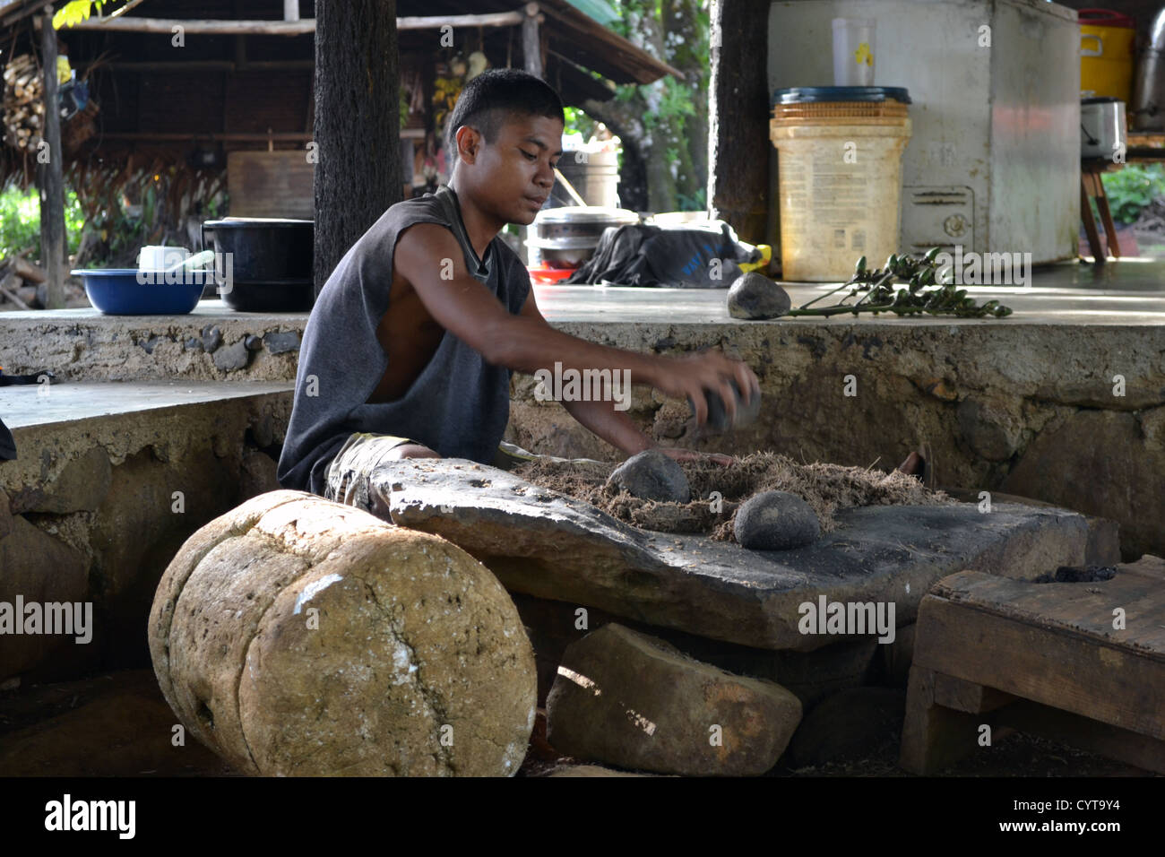 Preparation of Sakau, traditional Micronesian beverage, Madolenihmw Province, Pohnpei, Federated States of Micronesia - Stock Image