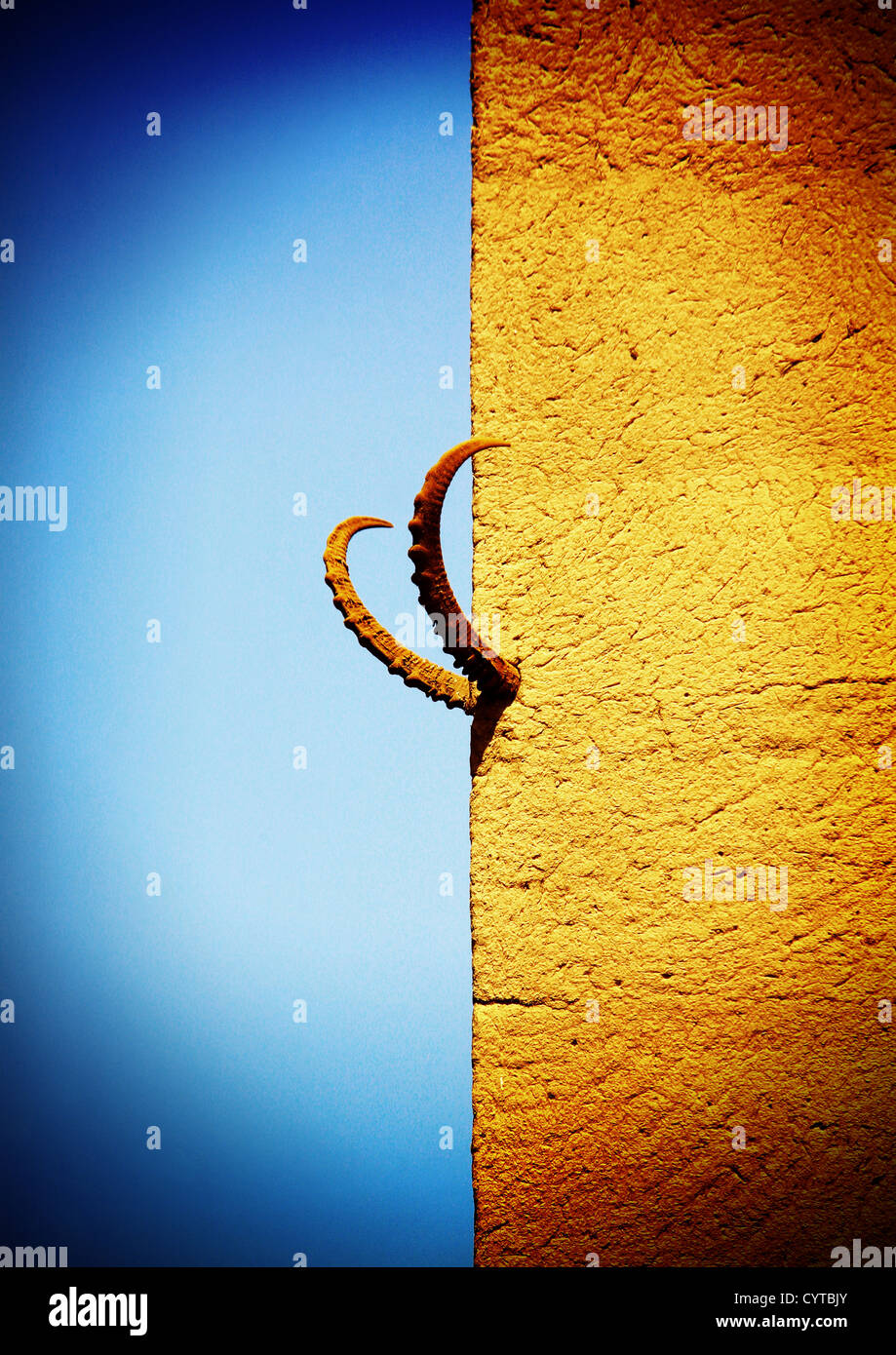 Ibex Horns Hung On The Wall Of A House, Wadi Doan, Yemen - Stock Image