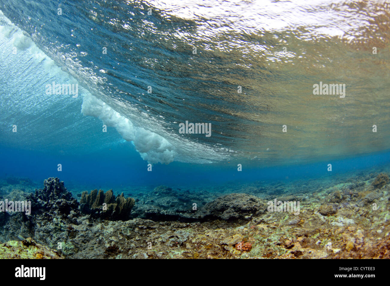 Wave breaking on reef, seen from below the surface, Palikir Pass, Pohnpei, Federated States of Micronesia - Stock Image