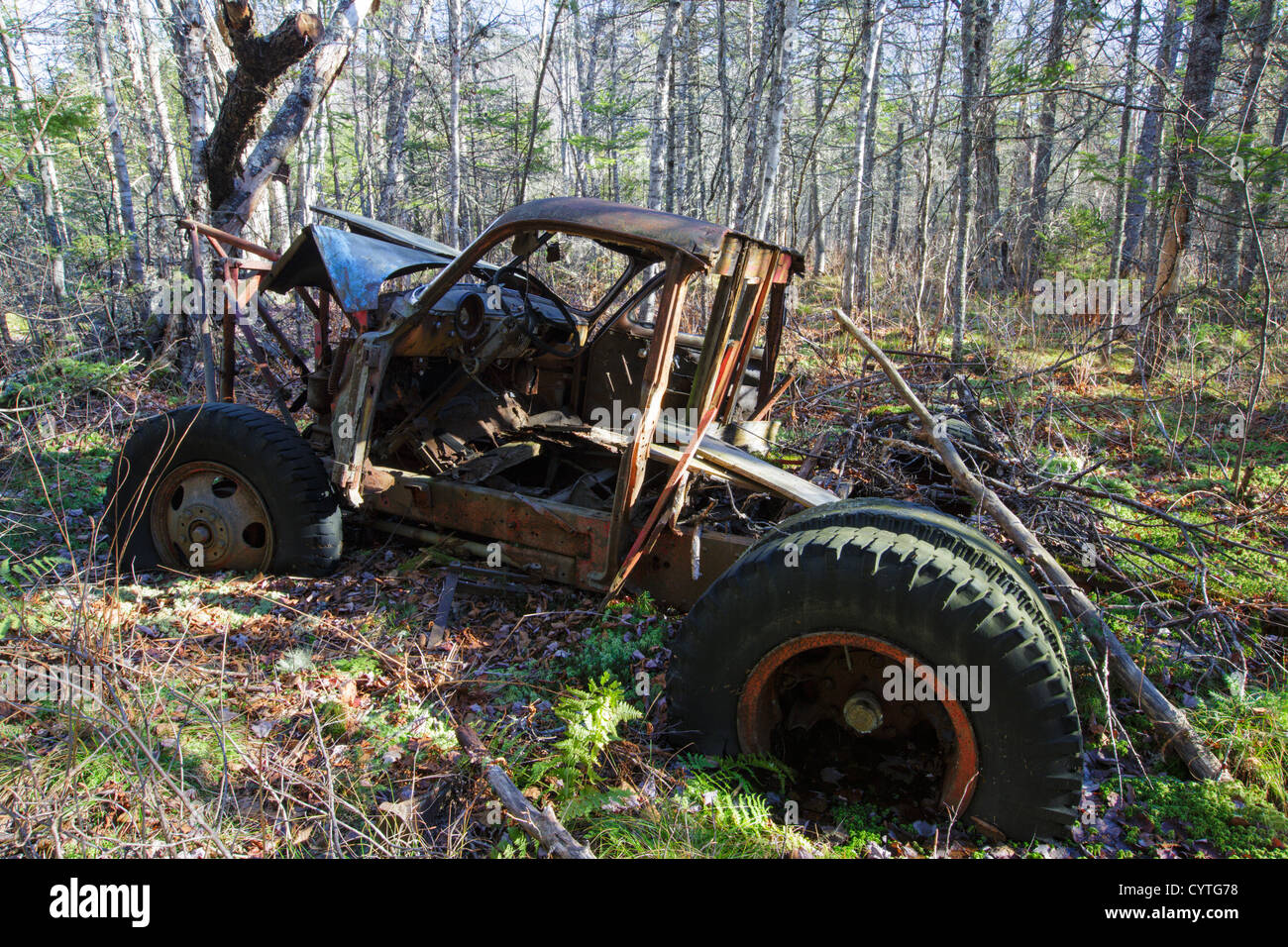 Abandoned 1950s Chevy in forest near Elbow Pond in Woodstock, New Hampshire USA - Stock Image