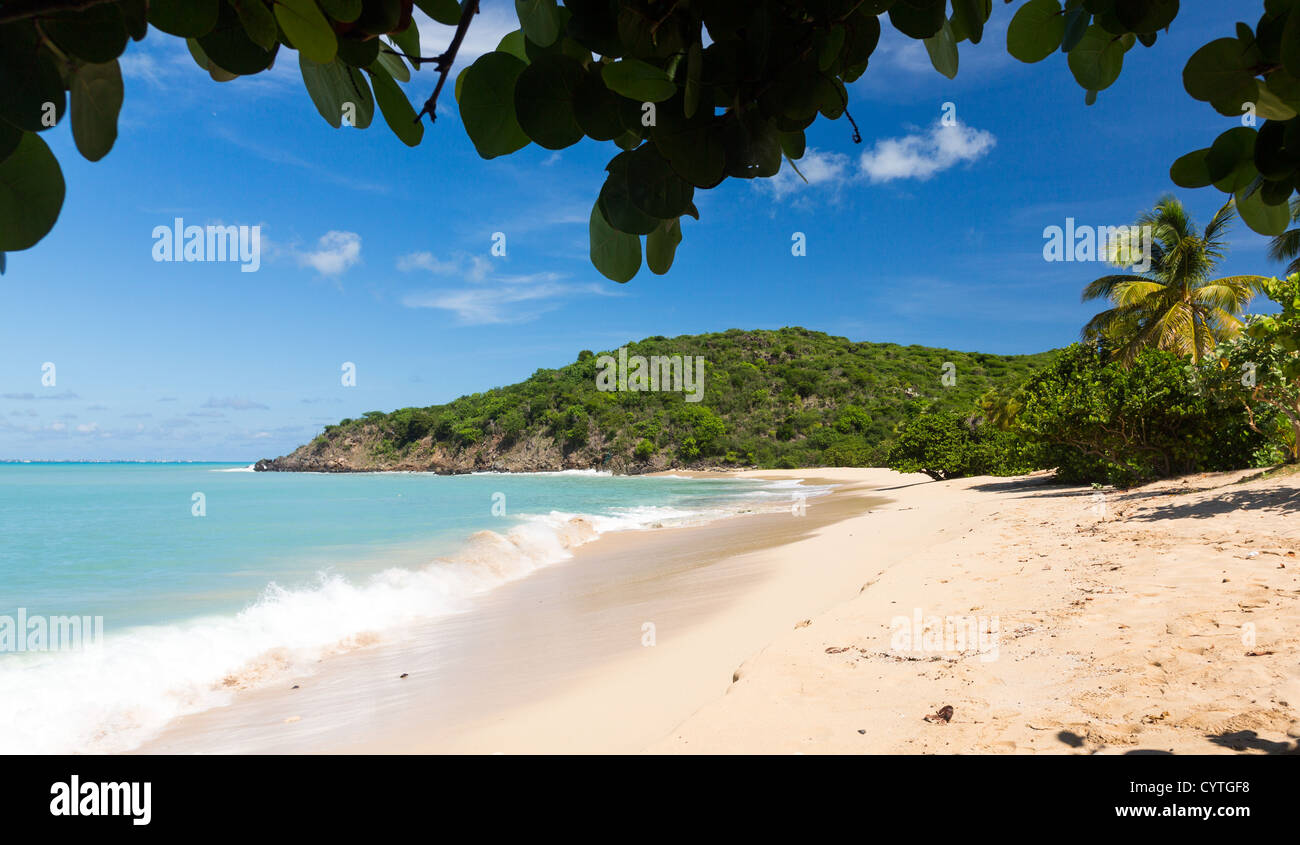 Happy Bay beach in St Maarten in the Caribbean - Stock Image