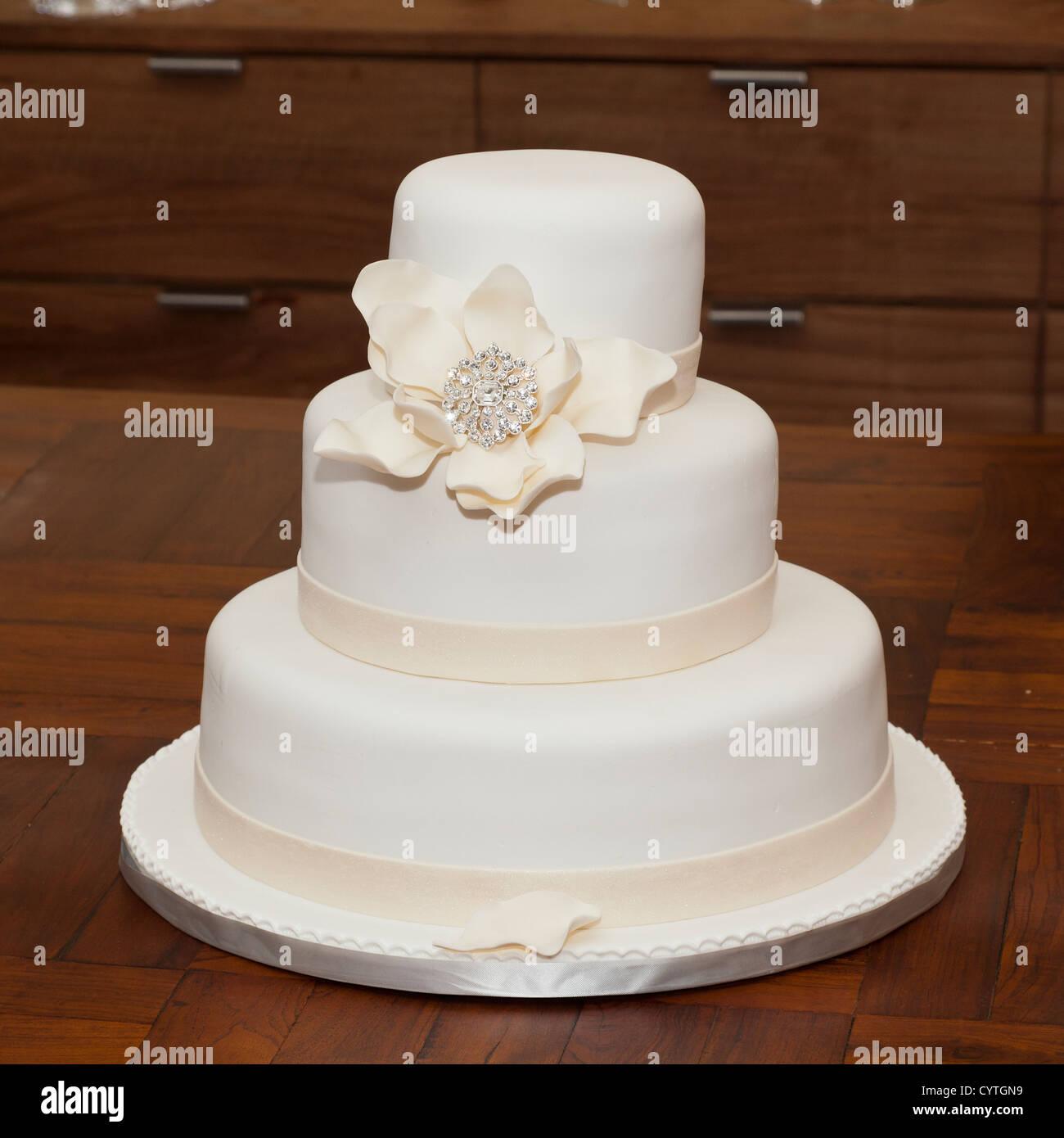Fancy Wedding Cake Tree Cornus Controversa Variegata Mold - Wedding ...