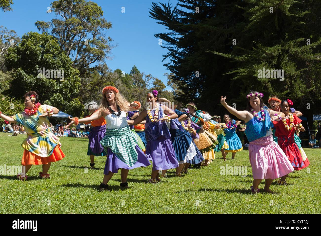 Elk284 7417 Hawaii Kauai Kokee State Park Hula Dancers