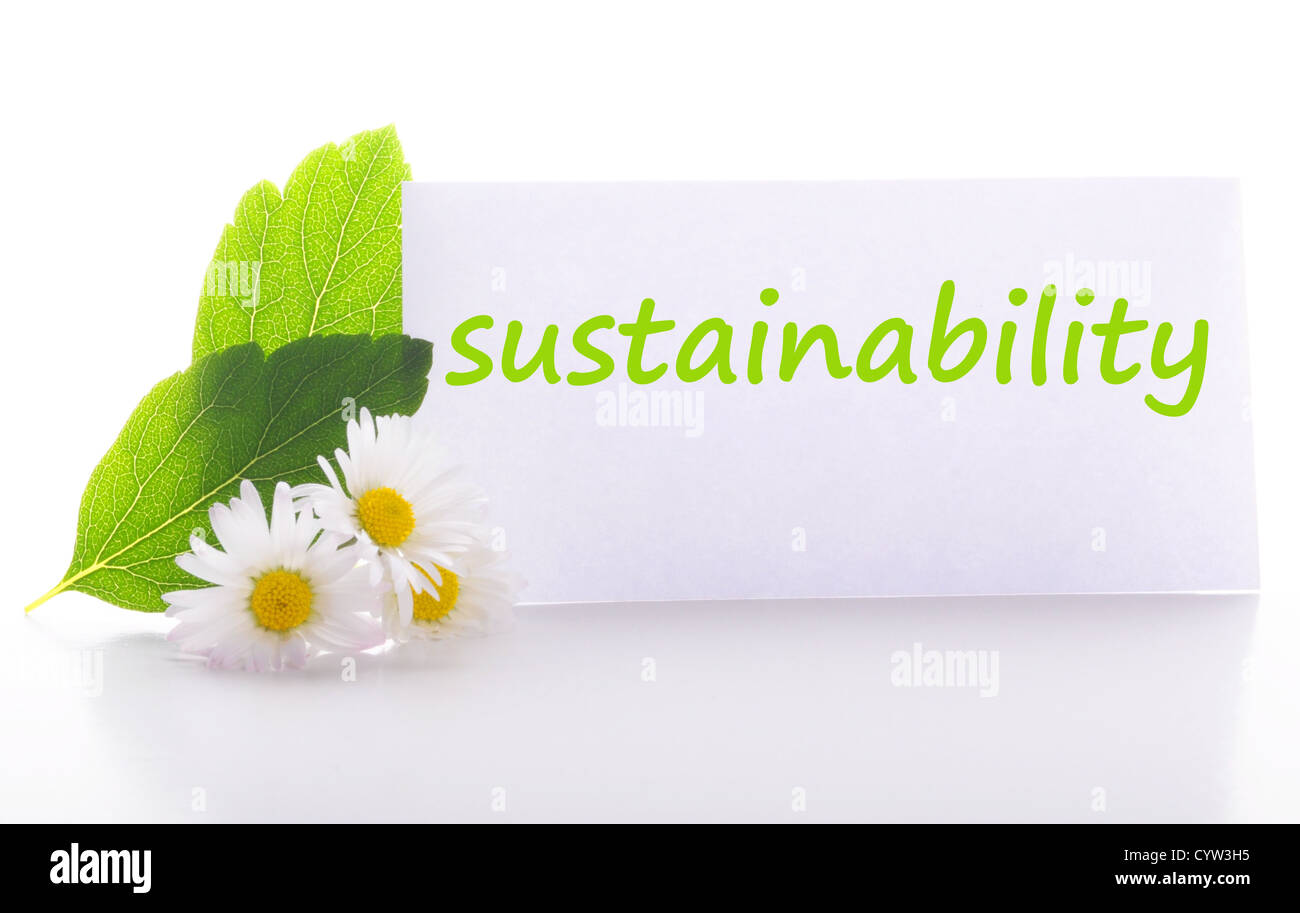 sustainability concept with word on nature still life - Stock Image