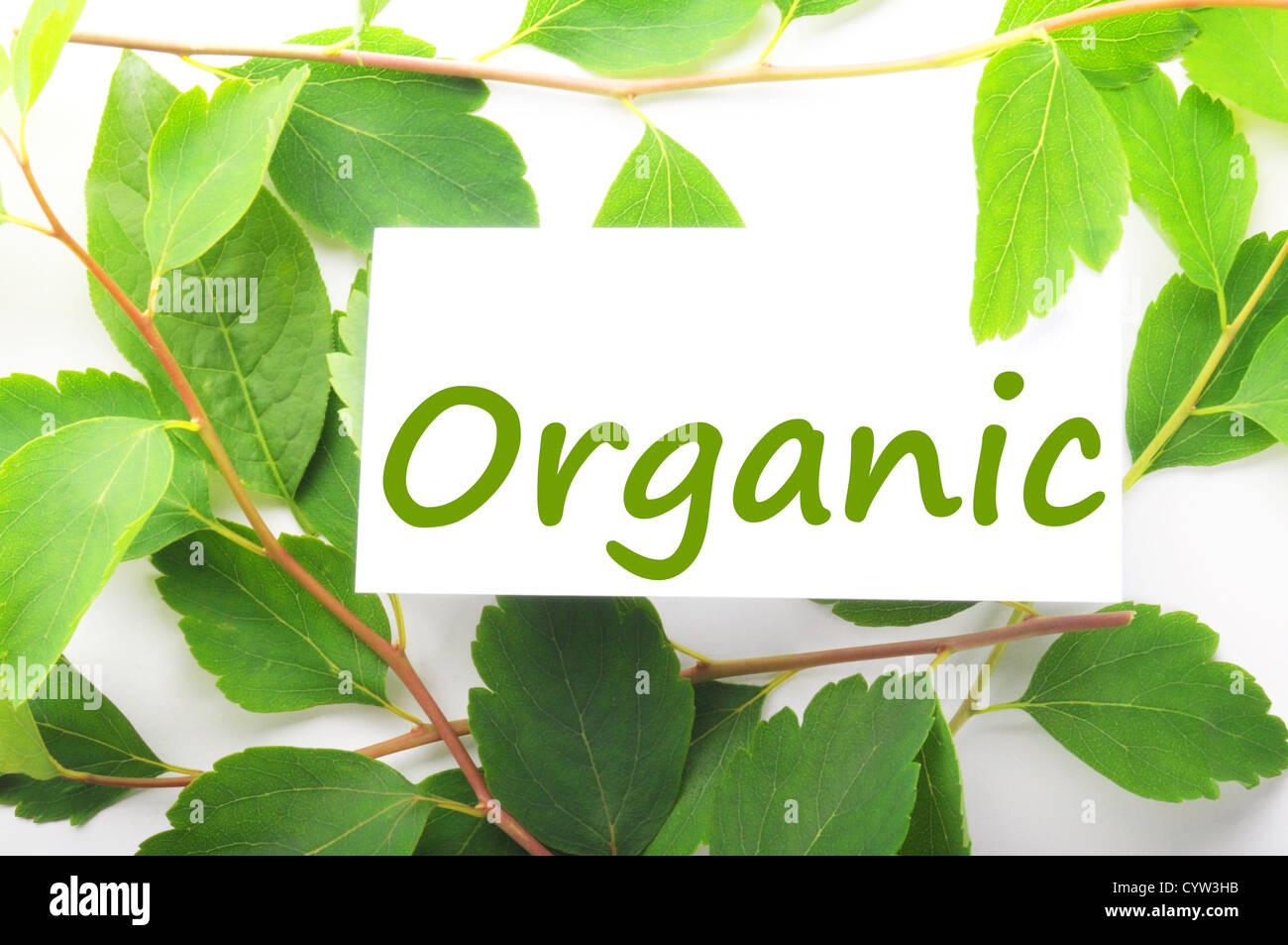 organic concept with word on nature still life - Stock Image