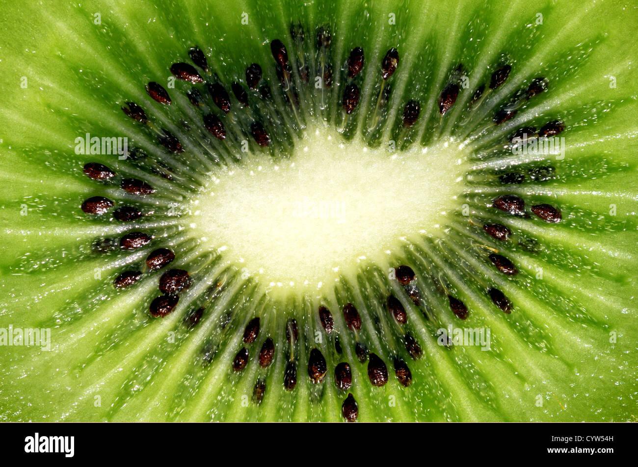 Kiwi fruit slice - Stock Image