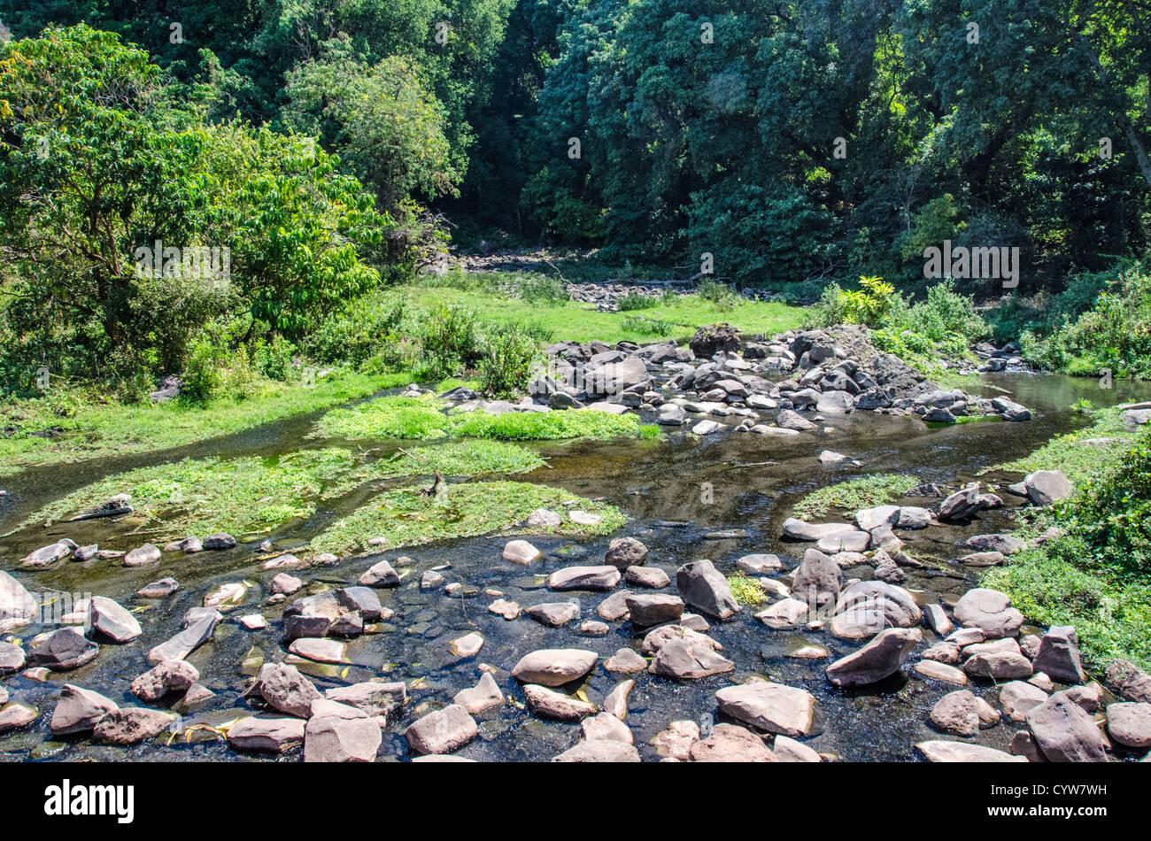 LAKE MANYARA NATIONAL PARK, Tanzania - A creek at Lake Manyara National Park in northern Tanzania. - Stock Image