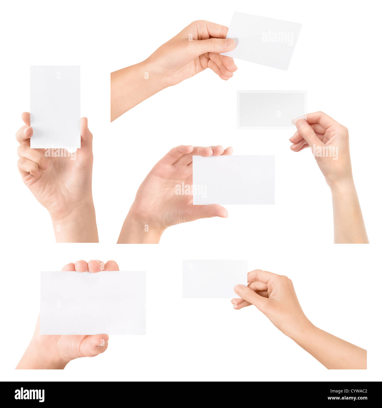 Female Hand Holding Blank Transparent Business Card In Collection Set Isolated On White