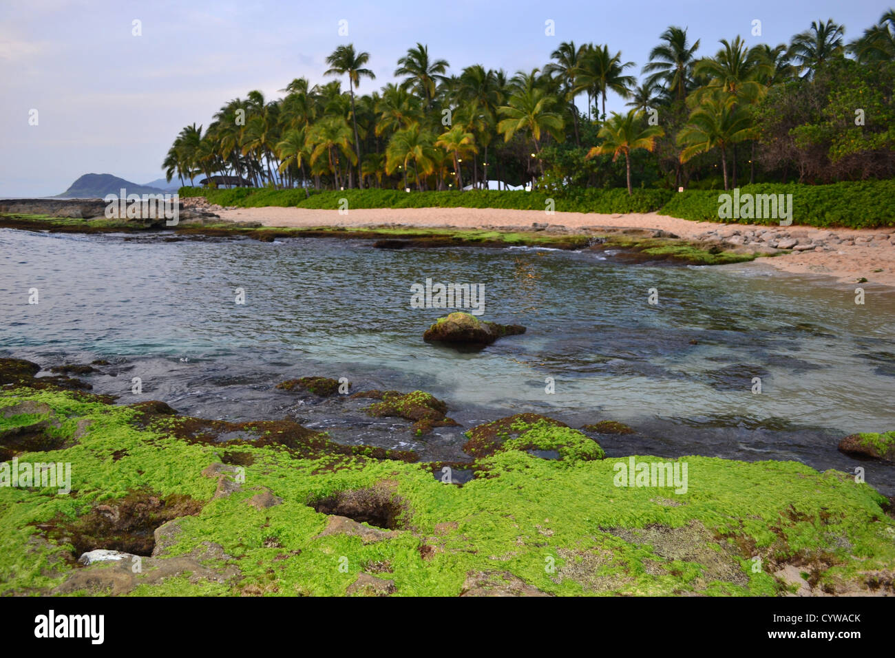 Ko'Olina Beach, West side of the island of Oahu, Hawaii, USA - Stock Image