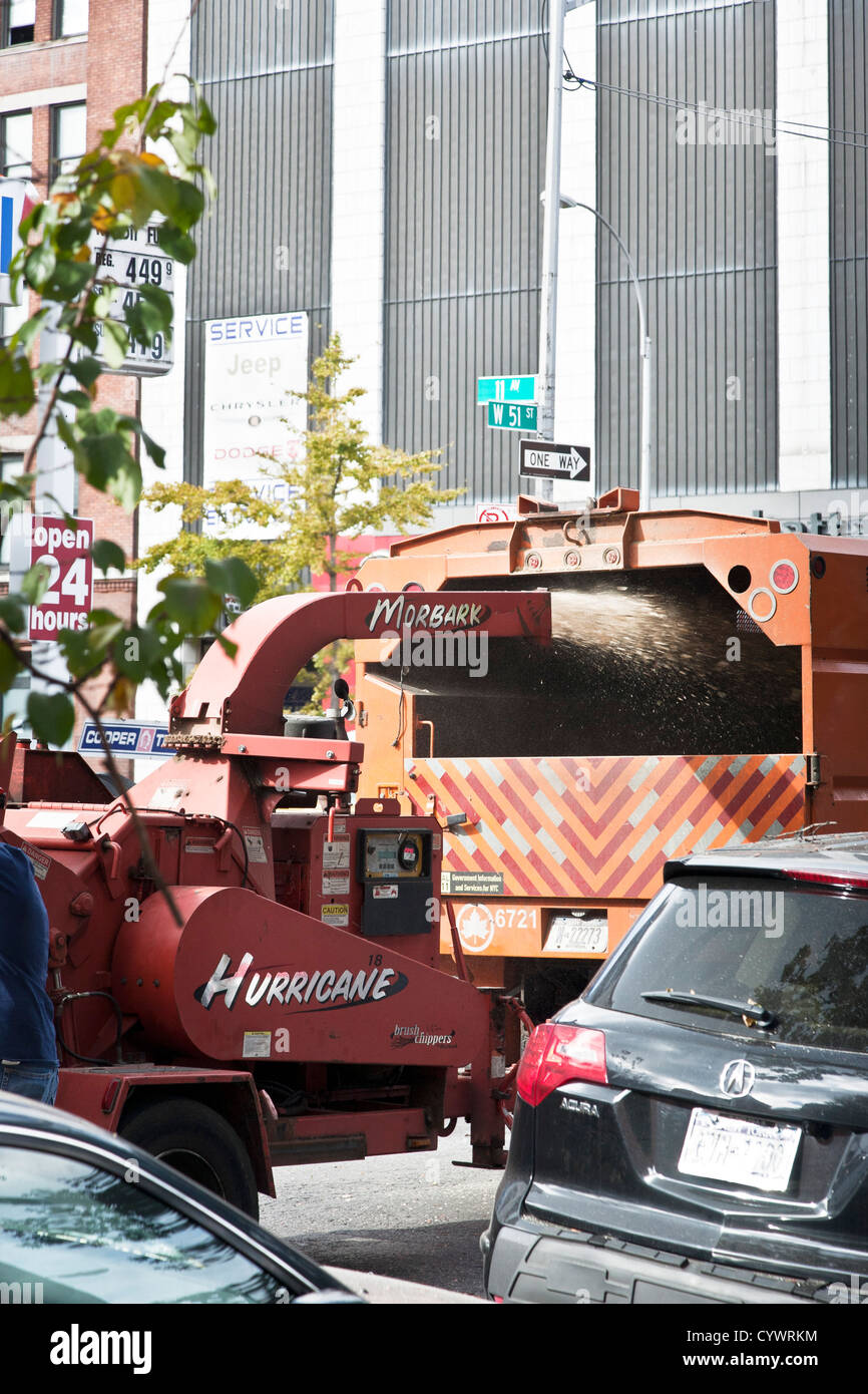 onsite woodchipper recycles branches after removal from tree being dismantled after uprooting by hurricane Sandy - Stock Image