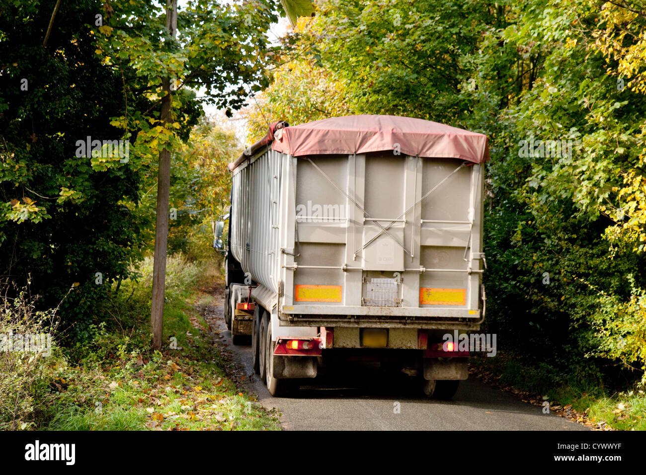 A large HGV lorry truck driving on a narrow country road, Suffolk UK - Stock Image