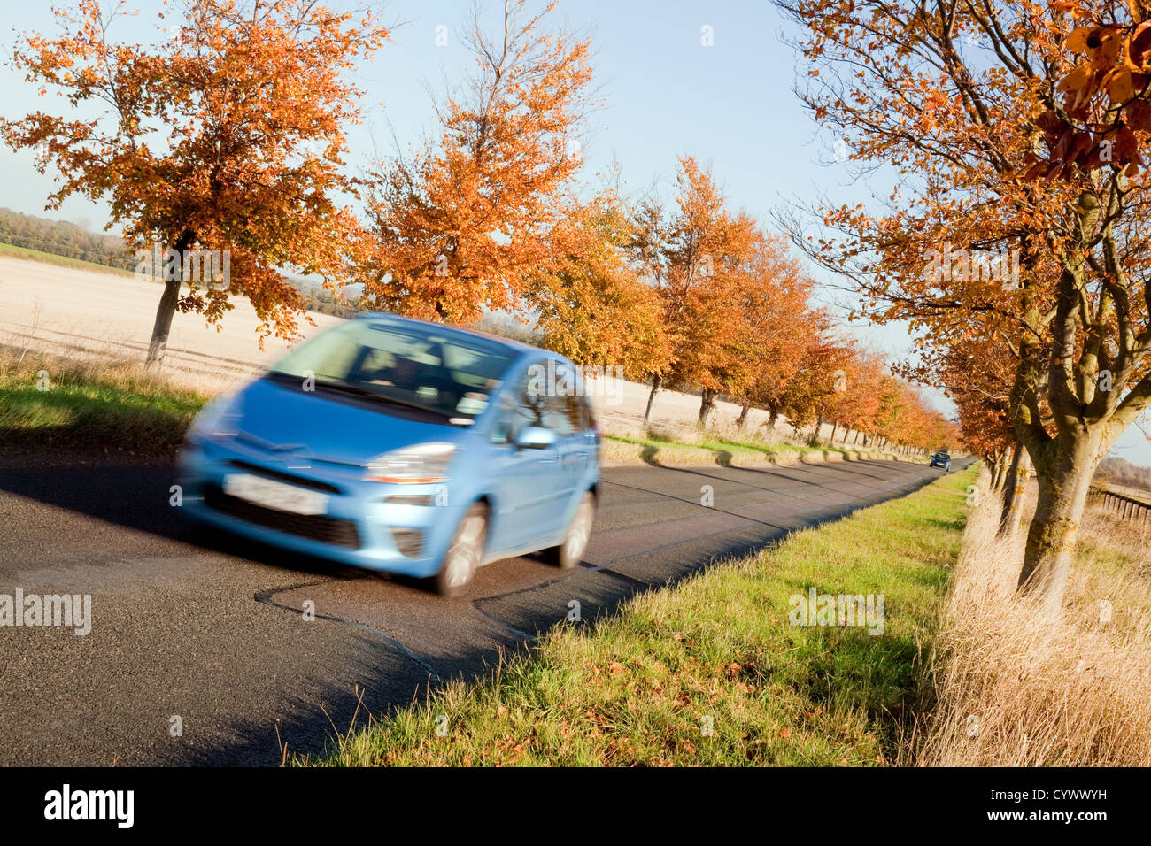 A blue car driving on a country roads roads in autumn, cambridgeshire UK - Stock Image