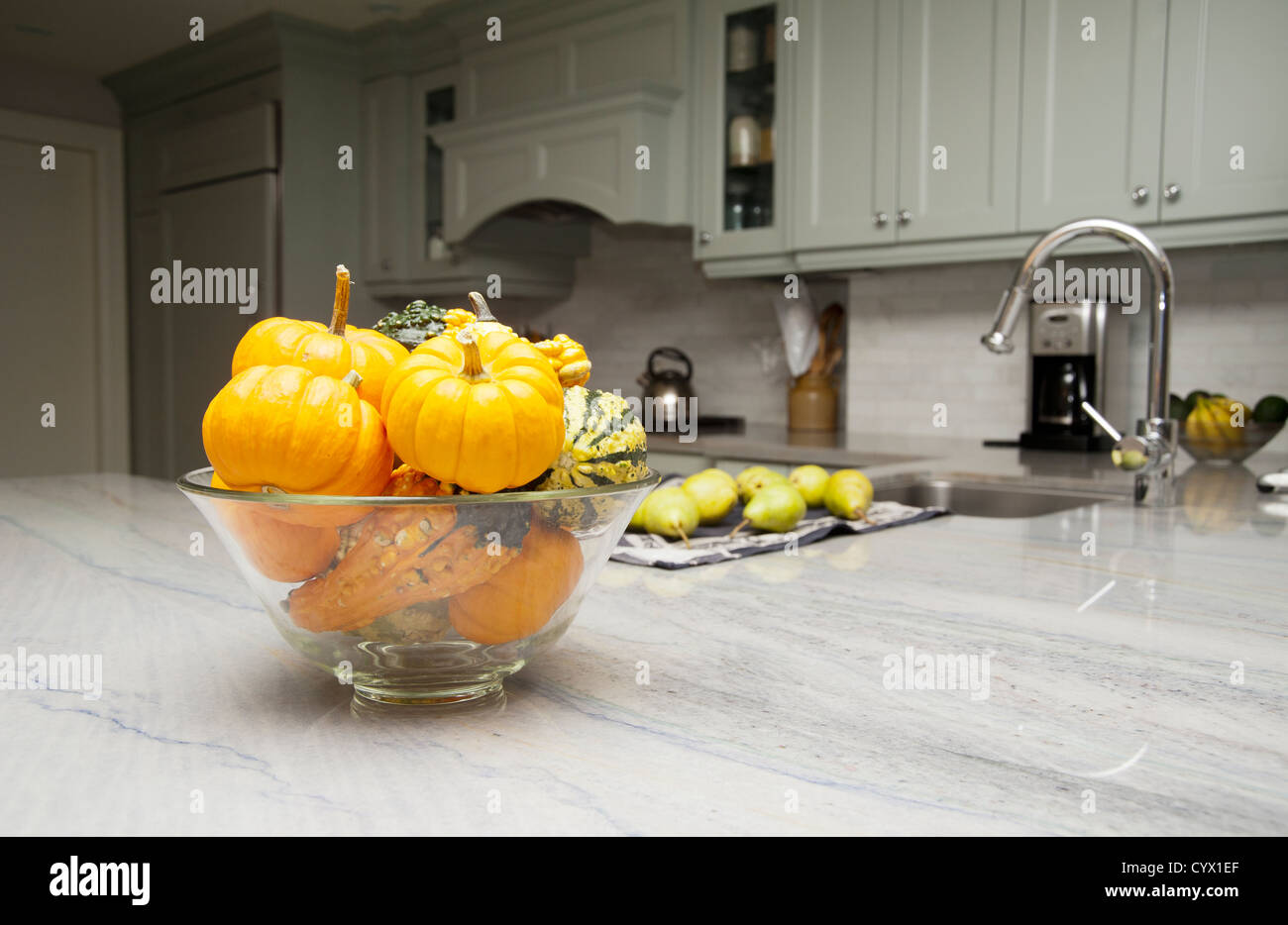 Bow of mini pumpkins and gourds on kitchen counter of home - Stock Image