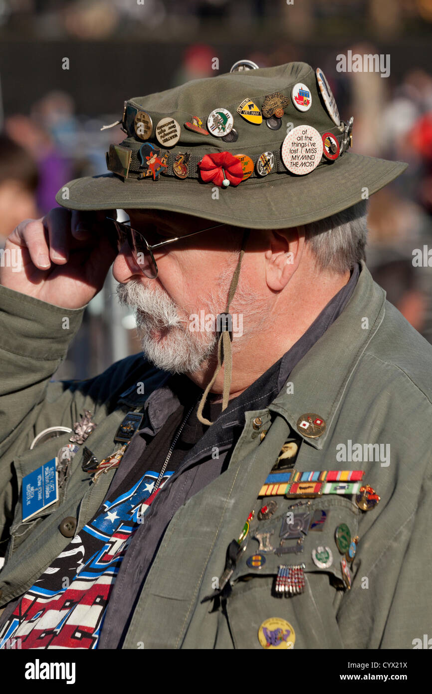 November 11, 2012: A Vietnam veteran sporting multiple badges and other memorabilia stands in front of the Vietnam - Stock Image