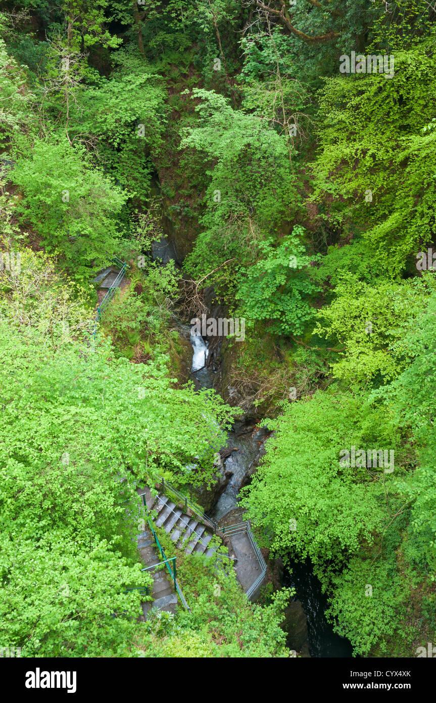 Wales, Devil's Bridge Falls - Stock Image