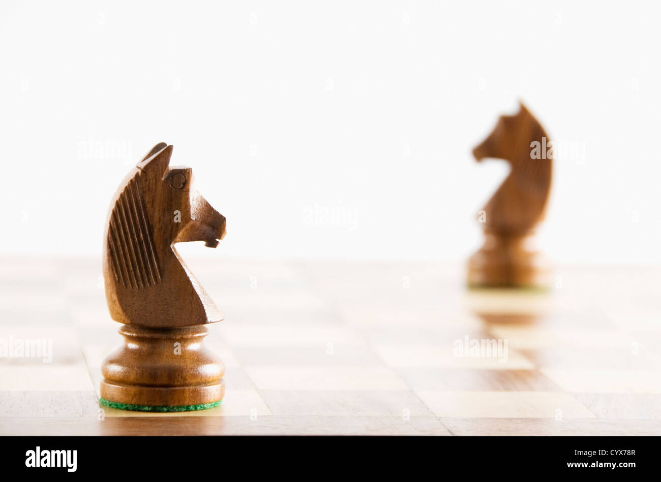 Close-up of chess knights on a chessboard Stock Photo
