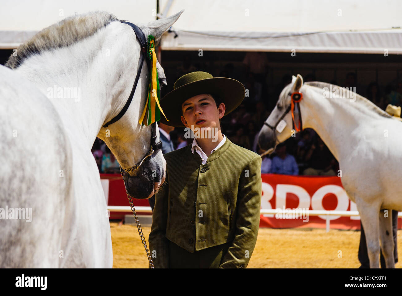 Andalusian teenager horseman exhibiting his mare at Cordoba Horse Fair. Andalusia, Spain - Stock Image