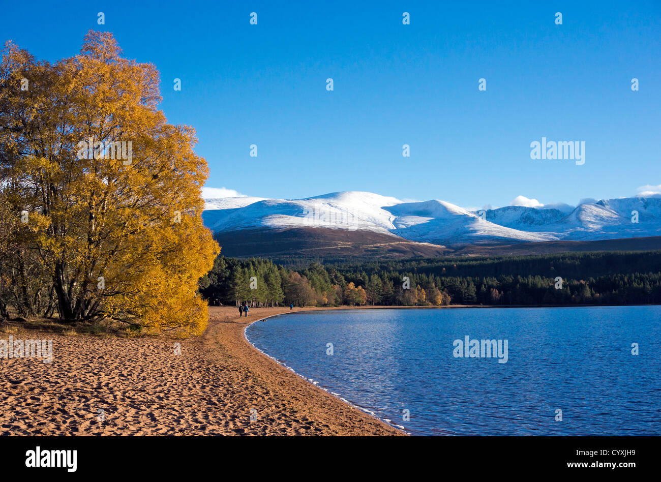Loch Morlich in the Cairngorms region of Scotland on a calm and sunny autumn day with snow covered Cairn Gorm  mountain - Stock Image