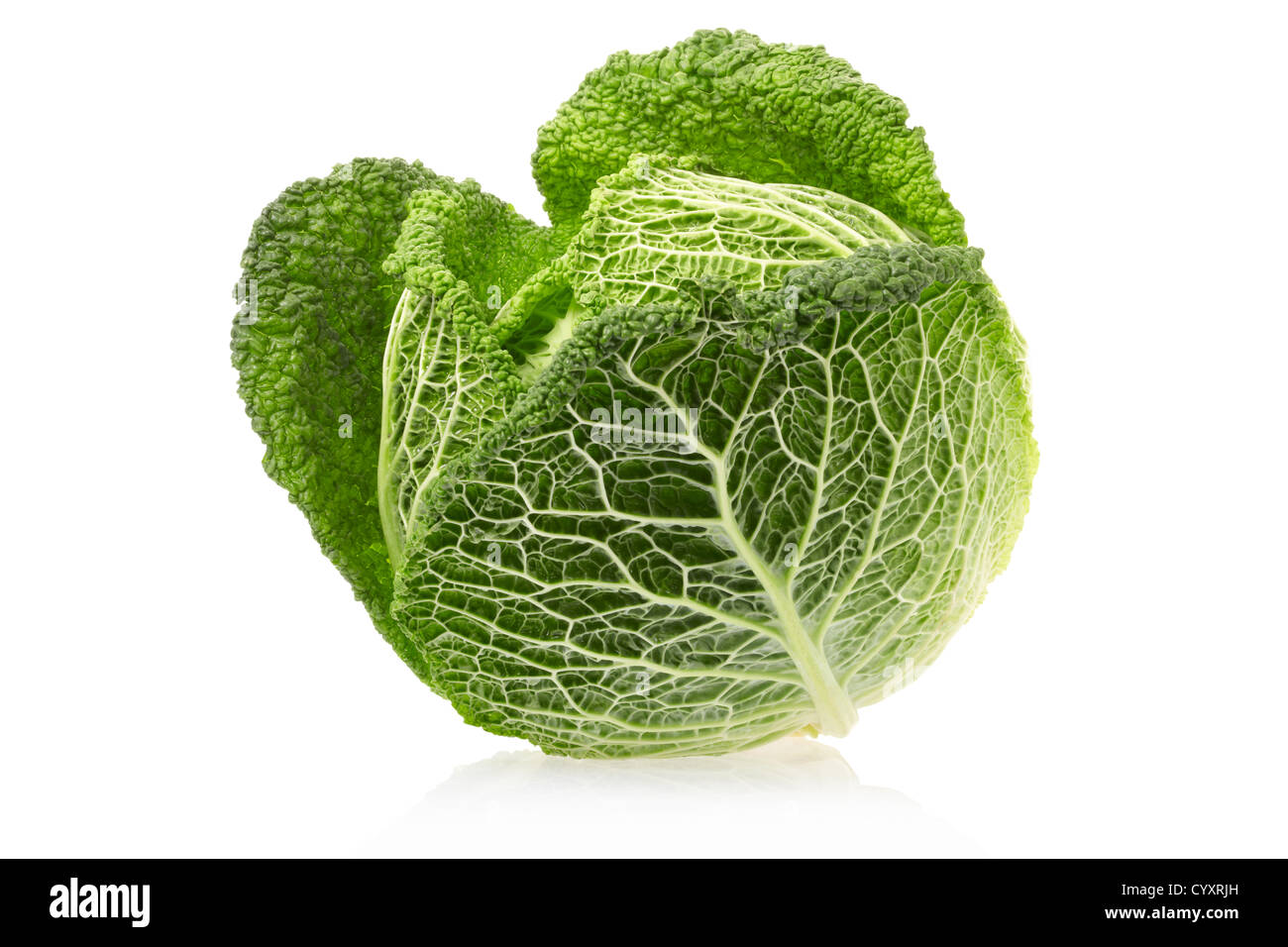 Green cabbage - Stock Image