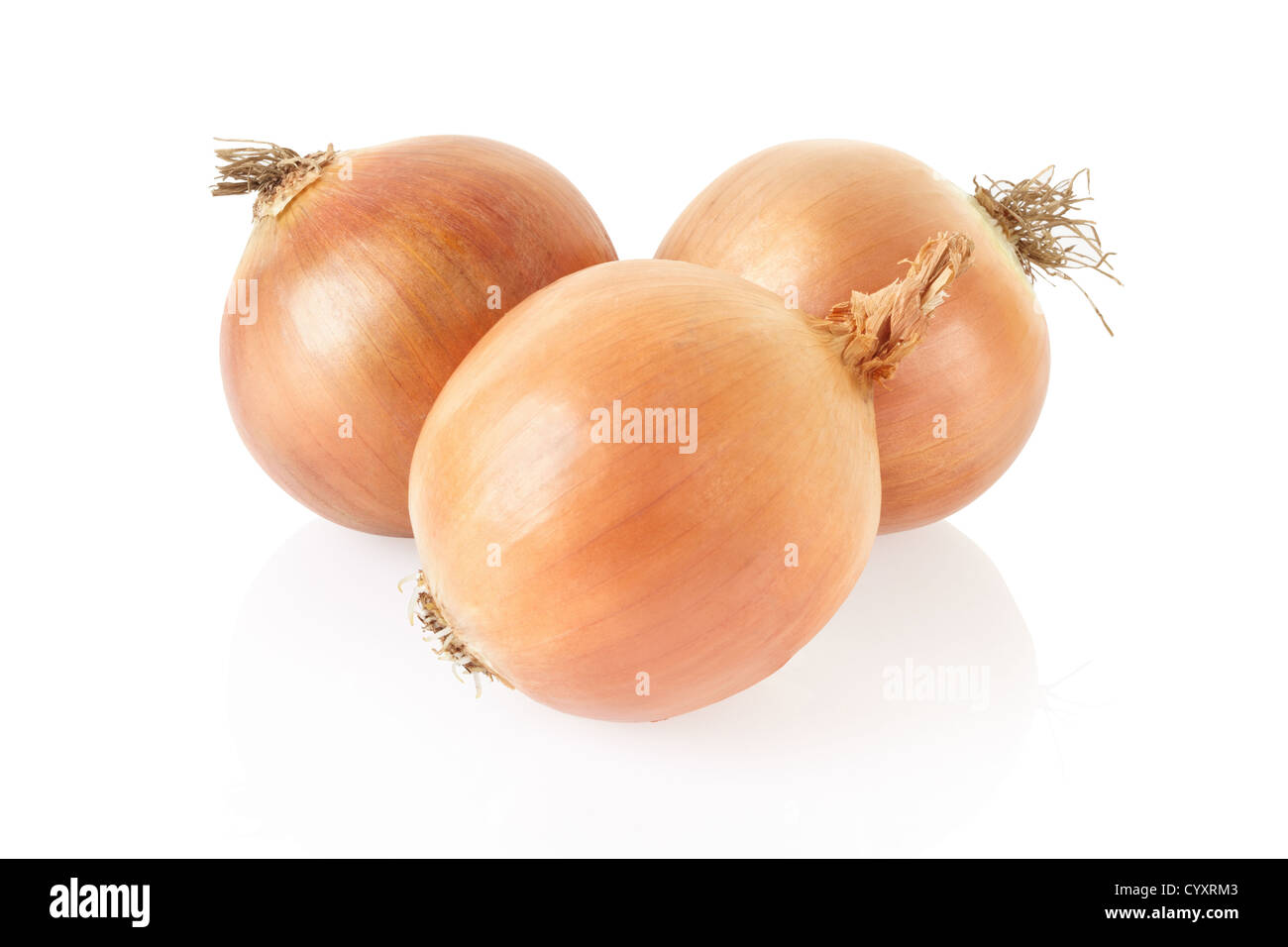 Onion group isolated on white, clipping path included - Stock Image
