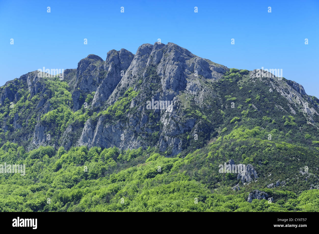 the peak of Bugarach, Languedoc-Roussillon, France where peoples may be saved in apocalypse by the mayan calendar - Stock Image