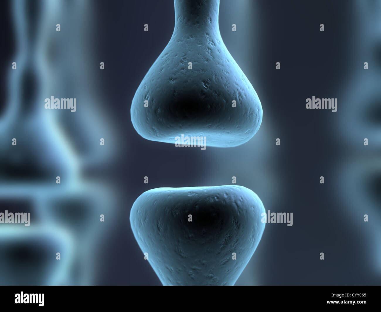 axon, brain, hormon, nerve, neuron, receptor, - Stock Image