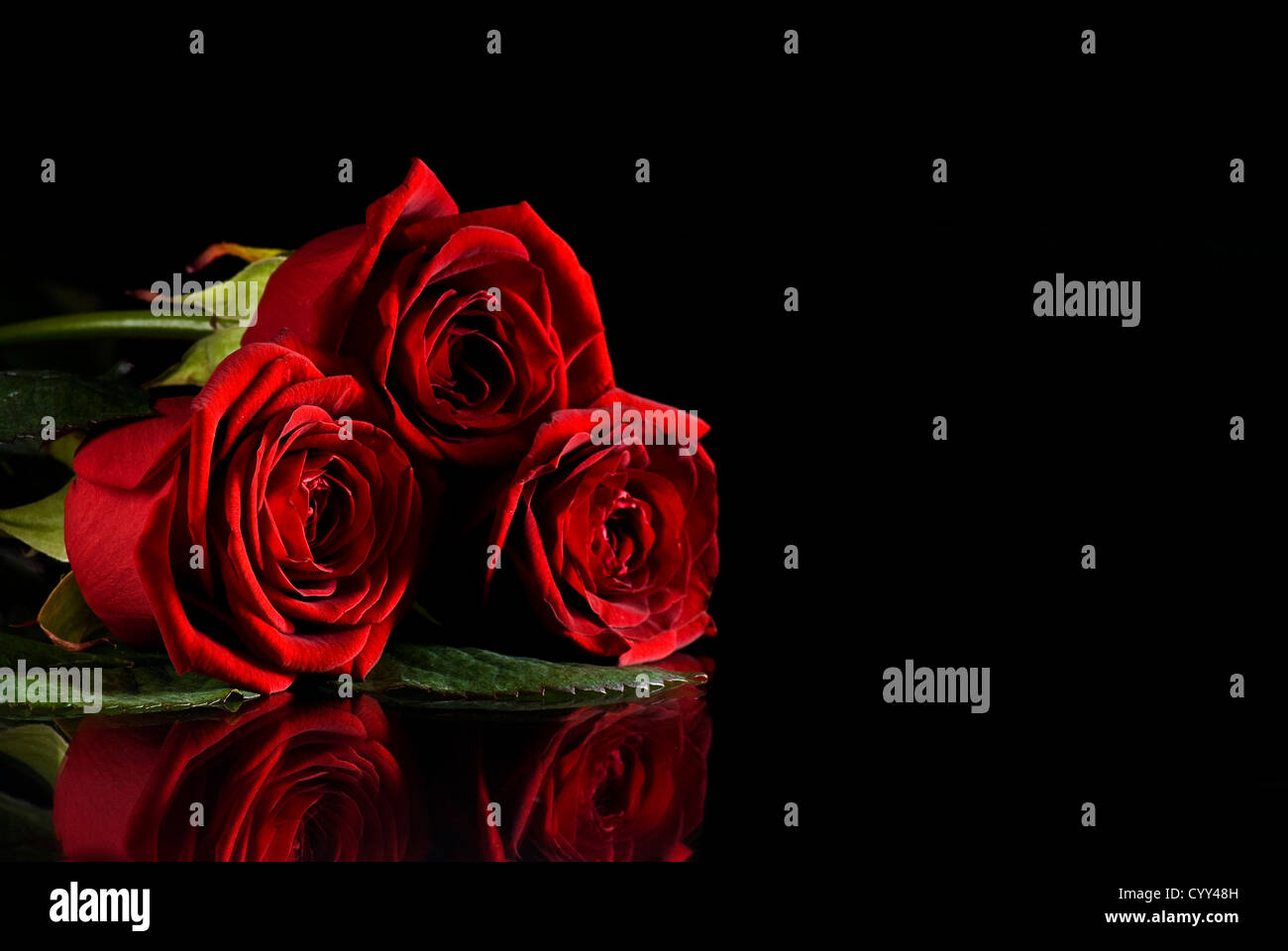 Red Roses On Black Background High Resolution Stock Photography And Images Alamy