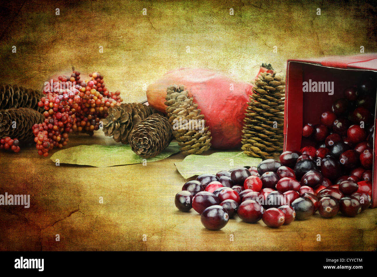Photo based illustration of a red Christmas box spilling out fresh cranberries with pine cones an pomegranates in - Stock Image