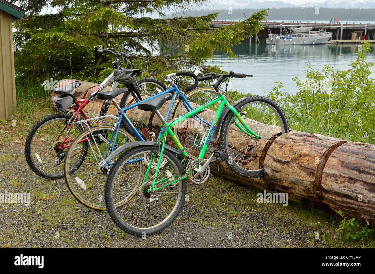 Log bike rack in Bartlett Cove, Glacier Bay National Park, Alaska. - Stock Image