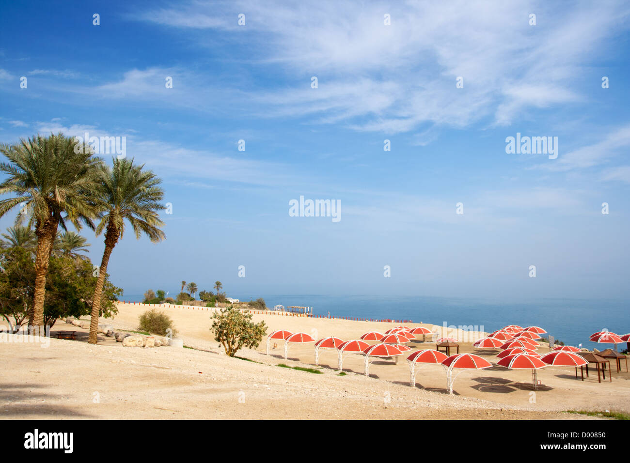 Ein Gedi oase at the Dead Sea. Israel - Stock Image