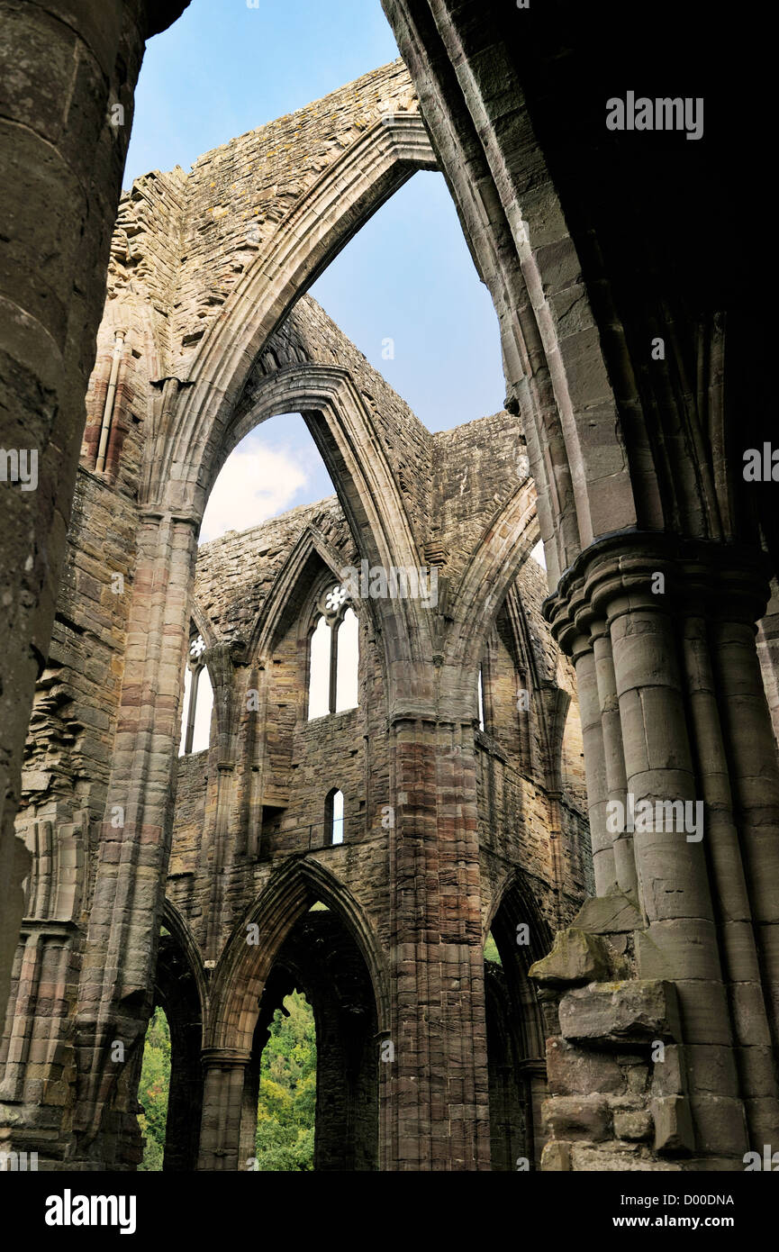 Tintern Abbey in the Wye Valley, Monmouthshire, Wales, UK. Cistercian Christian monastery founded 1131. Central - Stock Image