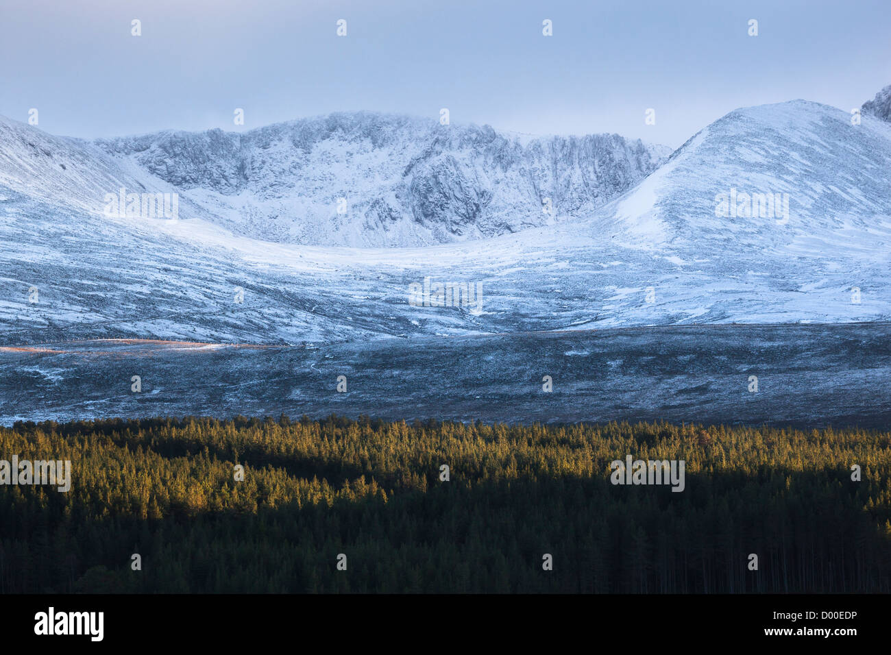 Coire an t-Sneachda and pine forest from Loch Morlich in the Cairngorms, Scottish Highlands - Stock Image