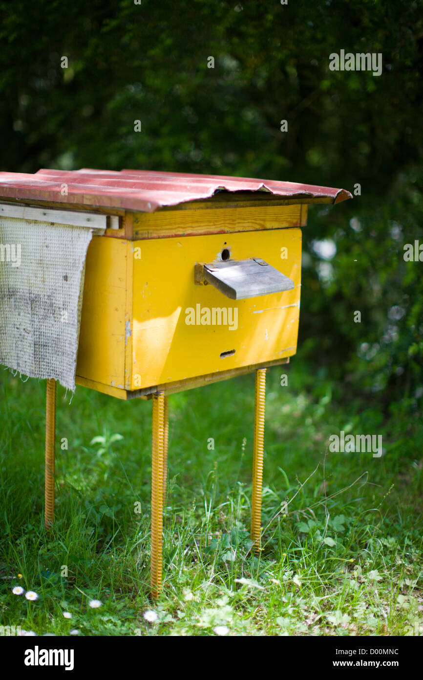 Yellow rural hive for bee colony summer day closeup - Stock Image