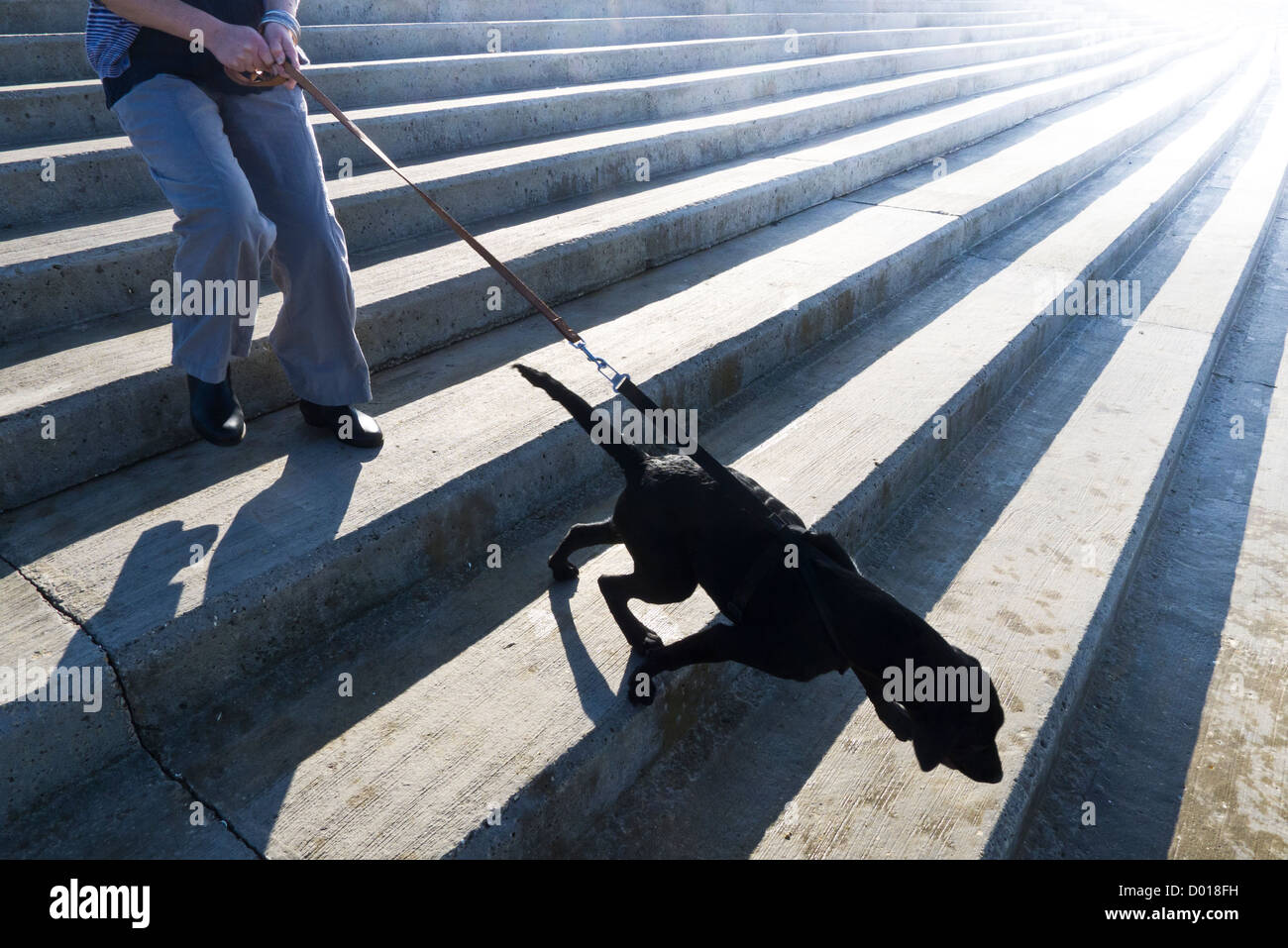Middle aged woman and her dog walking down a concrete sea-defence. - Stock Image