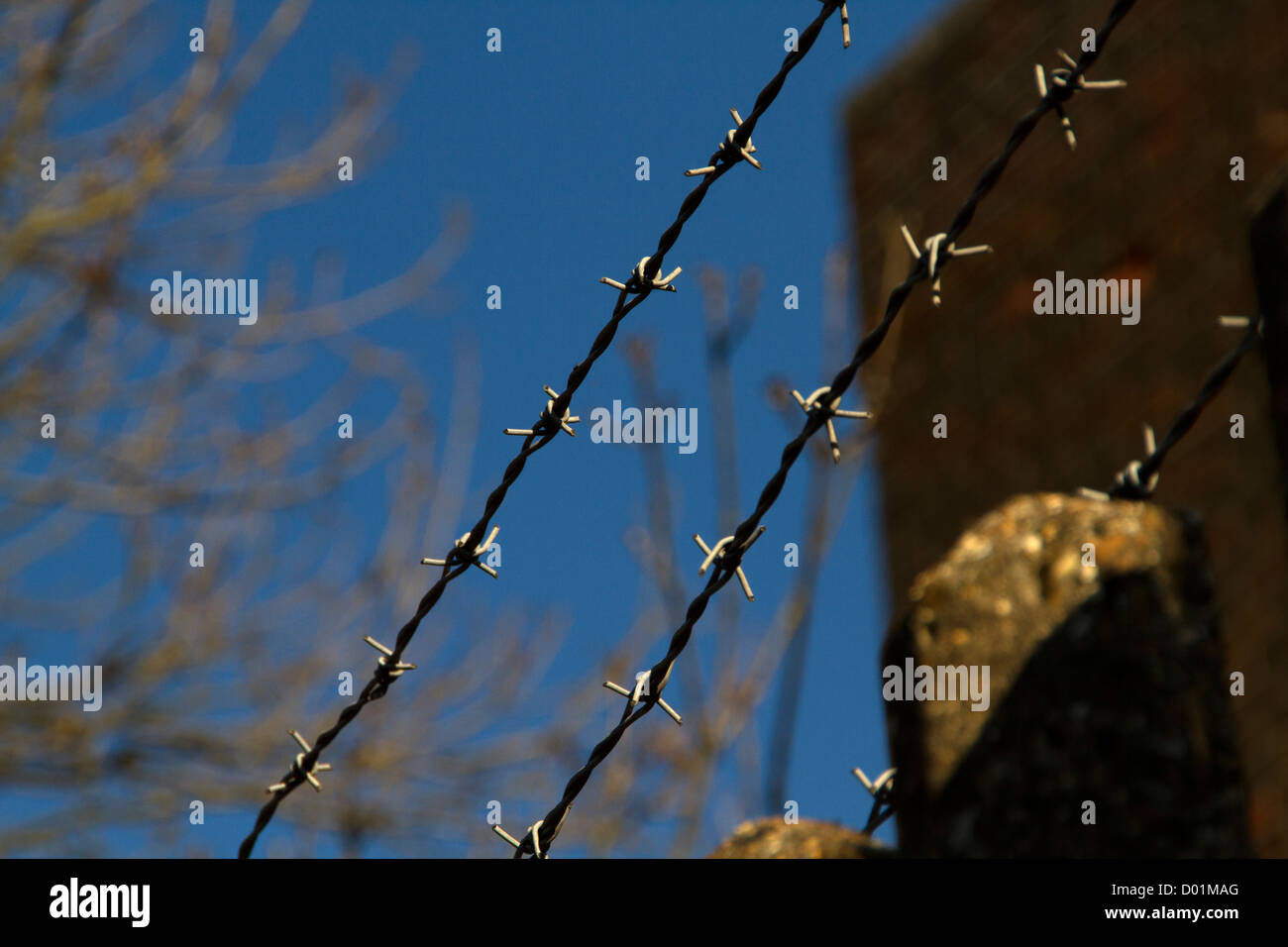 barbed wire against clear blue sky - Stock Image
