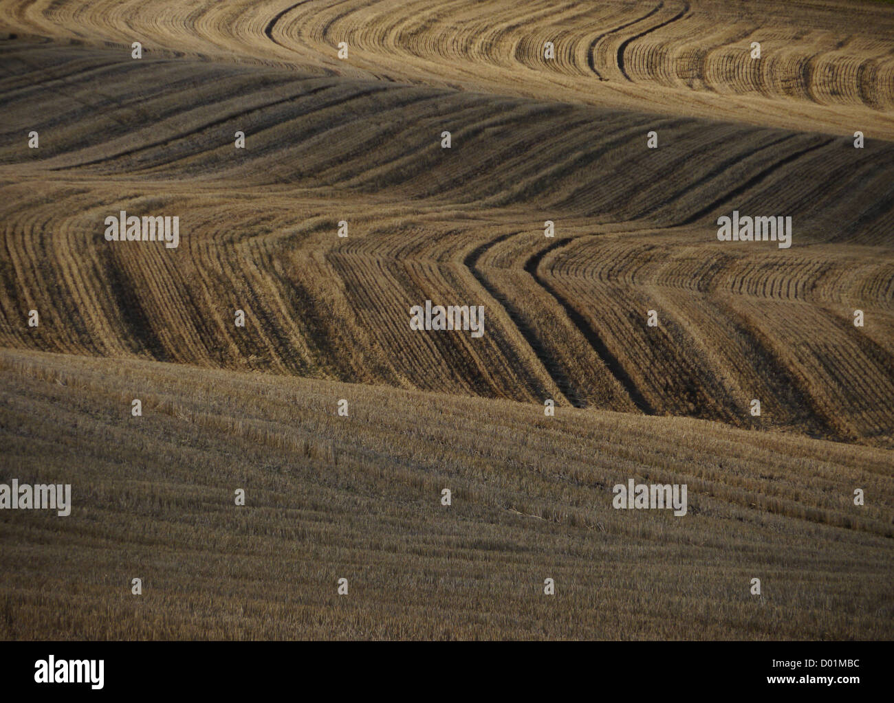 Fields in a rural Nottinghamshire English landscape in autumn (the fall) - Stock Image