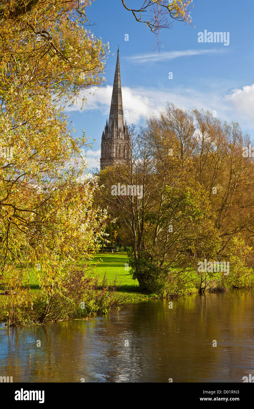 An autumn view of the spire of medieval Salisbury Cathedral, Wiltshire, England, UK with the River Avon in the foreground. - Stock Image