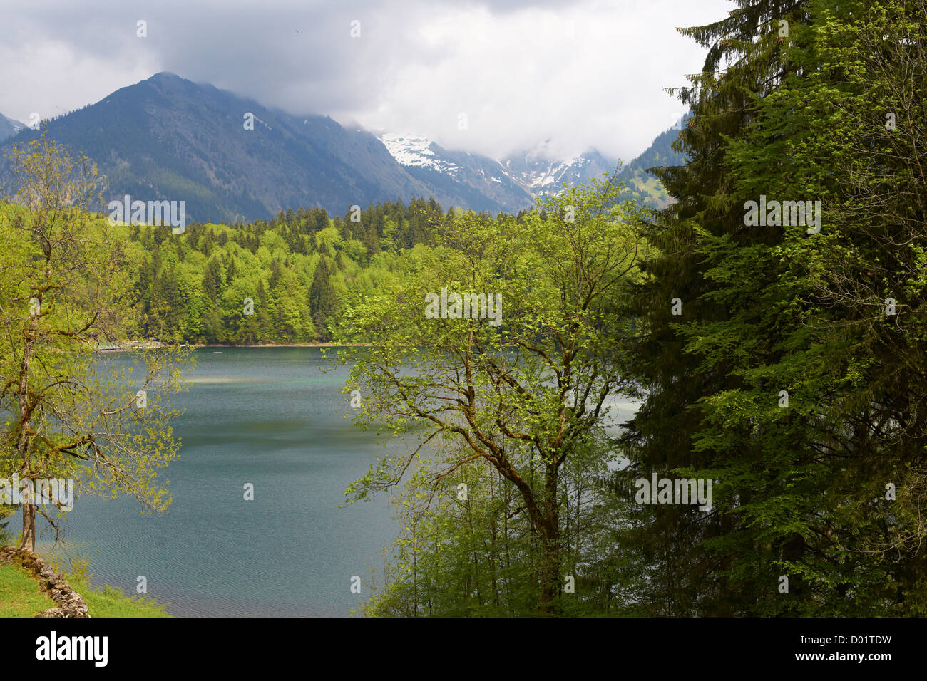 Freiberg lake near Oberstdorf in springtime - Stock Image